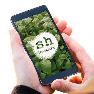 app pedidos sh levante fruta verdura valencia